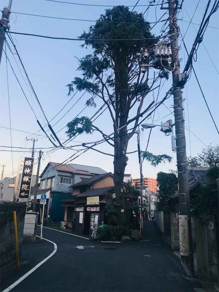 f:id:TokuheiKumagai:20211011195629j:image