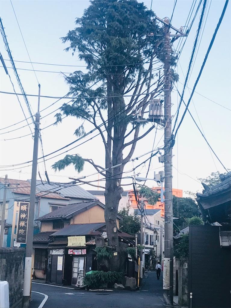 f:id:TokuheiKumagai:20211011195632j:image