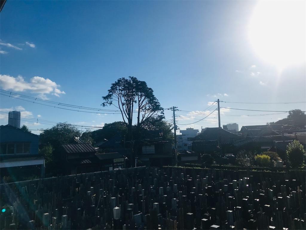 f:id:TokuheiKumagai:20211011195638j:image