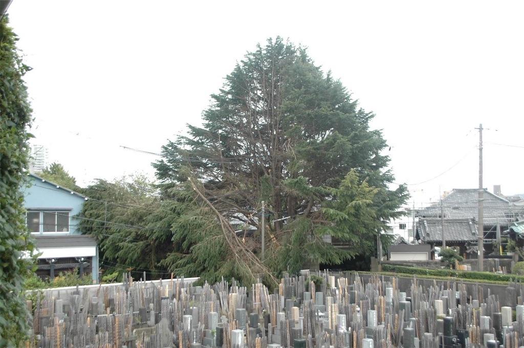 f:id:TokuheiKumagai:20211014215819j:image