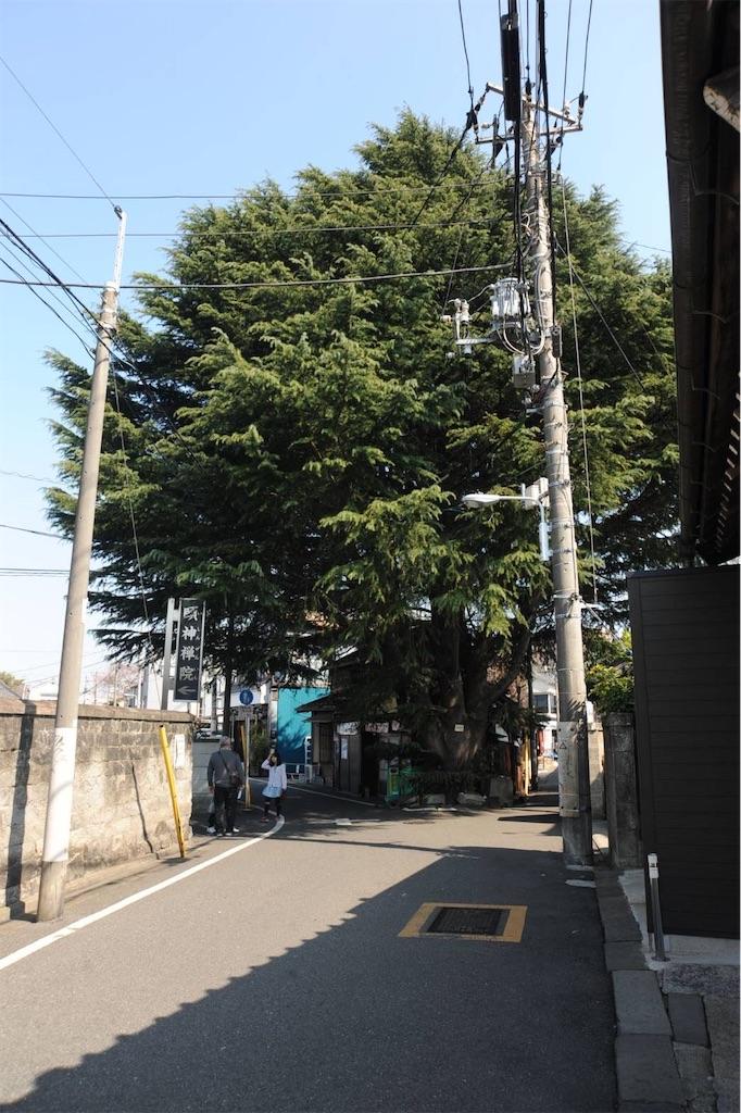 f:id:TokuheiKumagai:20211014215822j:image