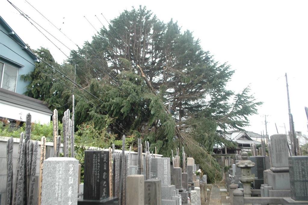 f:id:TokuheiKumagai:20211014215826j:image