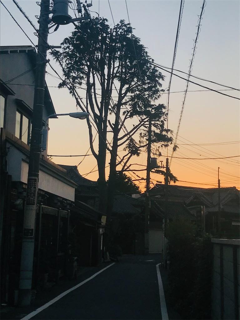 f:id:TokuheiKumagai:20211014215829j:image