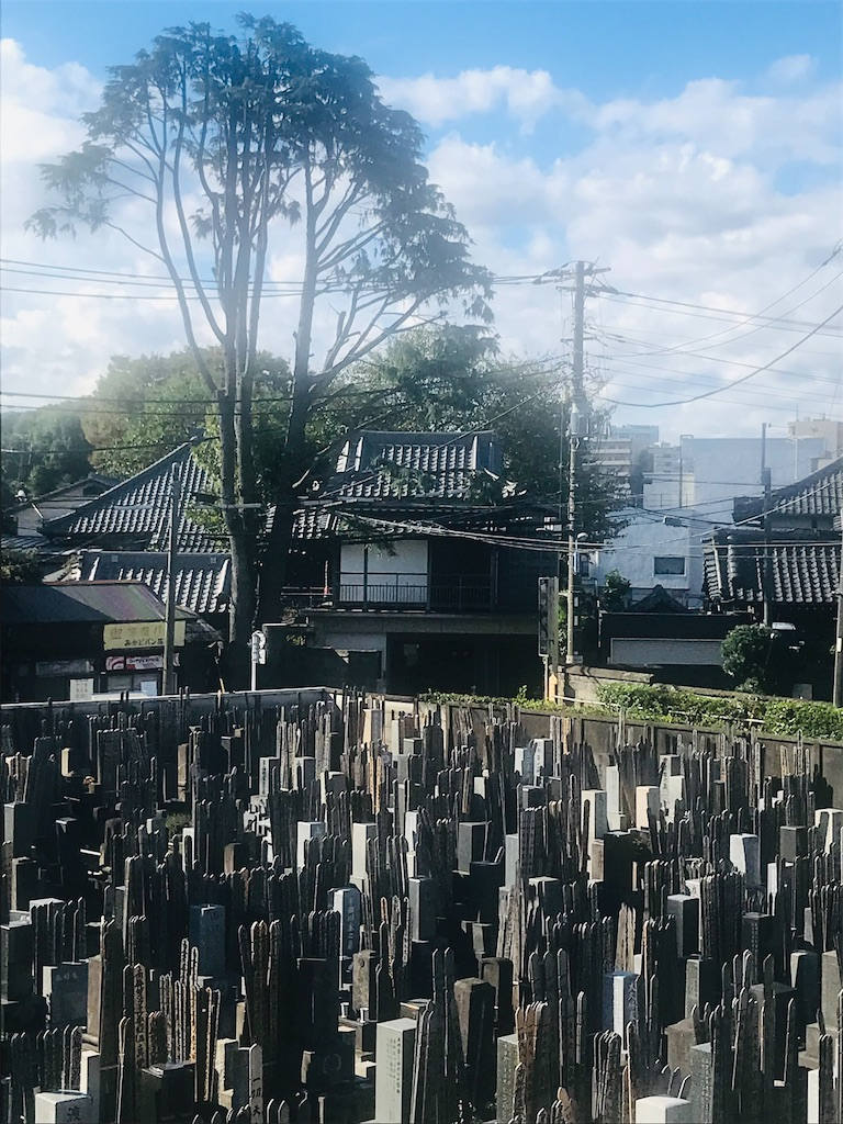 f:id:TokuheiKumagai:20211021195619j:image