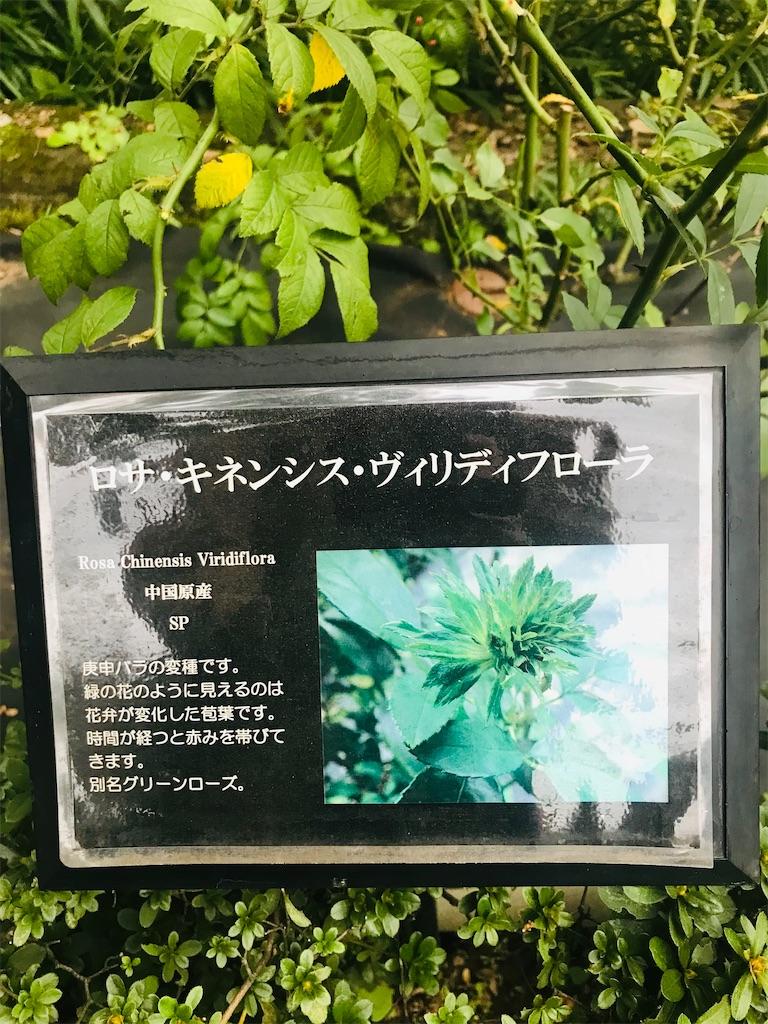 f:id:TokuheiKumagai:20211021195745j:image