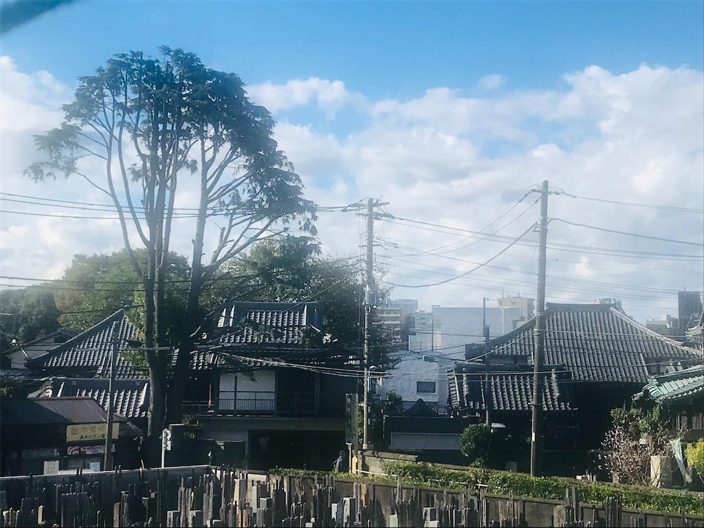 f:id:TokuheiKumagai:20211021195800j:image
