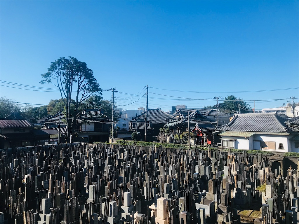 f:id:TokuheiKumagai:20211023231439j:image
