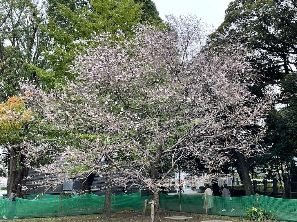 f:id:TokuheiKumagai:20211025194440j:image