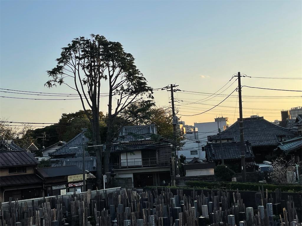 f:id:TokuheiKumagai:20211026172937j:image