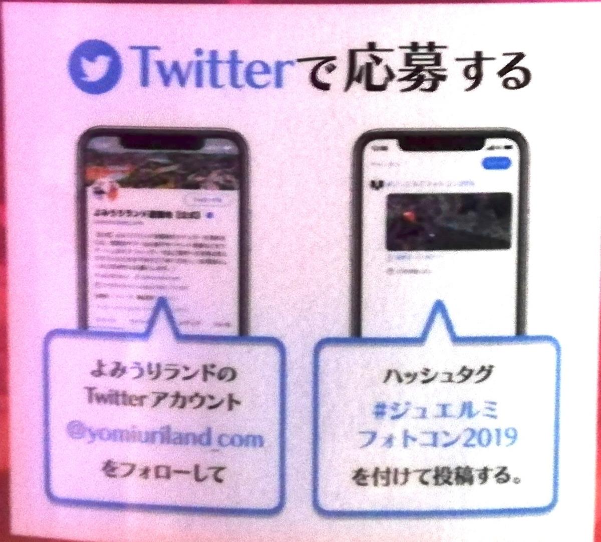 f:id:Tokyo-amuse:20191115005739j:plain