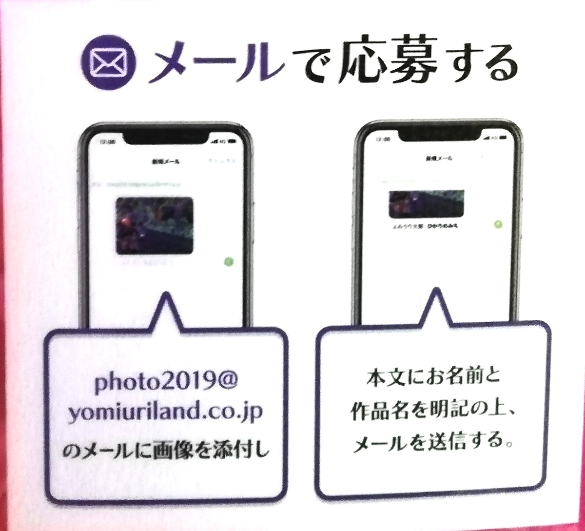f:id:Tokyo-amuse:20191115005808j:plain