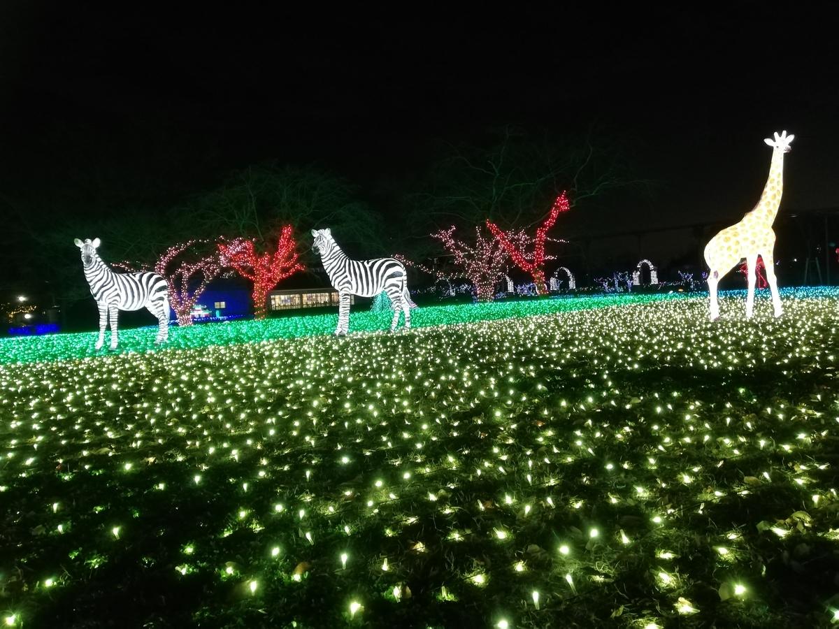f:id:Tokyo-amuse:20191215083437j:plain