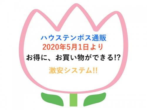 f:id:Tokyo-amuse:20200501202338j:plain