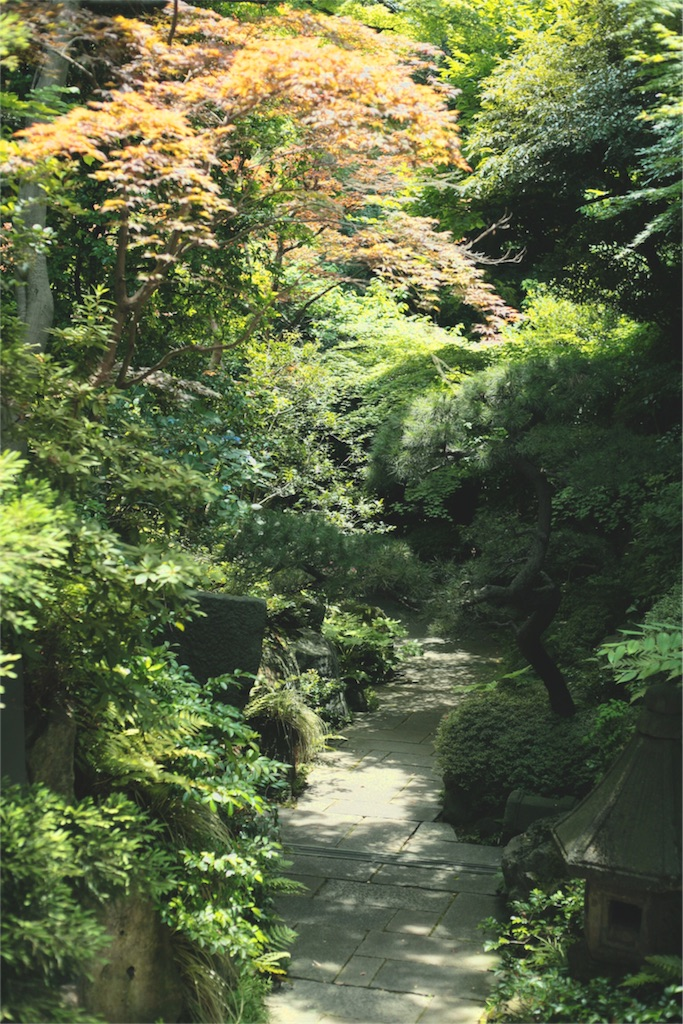 f:id:Tokyo-hitsumabushi:20160611235316j:image