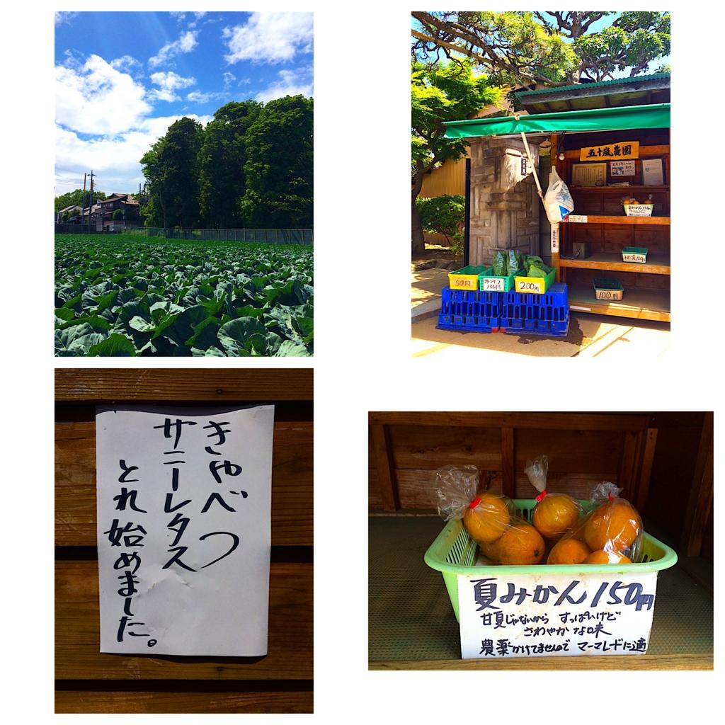 f:id:Tokyoite:20170209224053j:plain