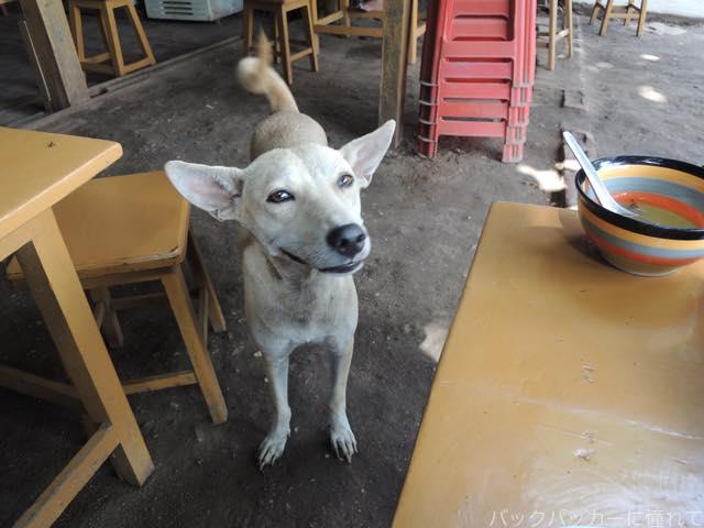20161017185925 - 【ミャンマー】バガンのきたな美味いローカル店で絶品チキン&ポークカレー