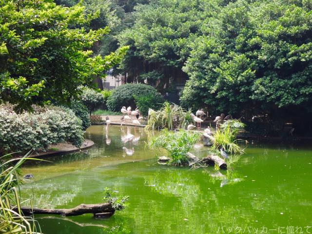 20161107221048 - ヤンゴンから香港へ!茶餐廳で食事をして九龍公園・佐敦・旺角の街歩き