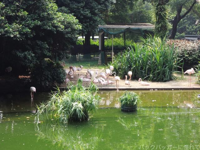 20161108193518 - ヤンゴンから香港へ!茶餐廳で食事をして九龍公園・佐敦・旺角の街歩き