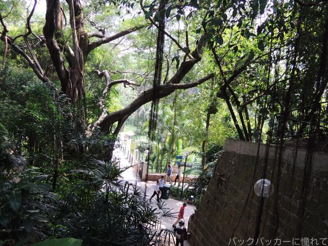 20161108193853 - ヤンゴンから香港へ!茶餐廳で食事をして九龍公園・佐敦・旺角の街歩き