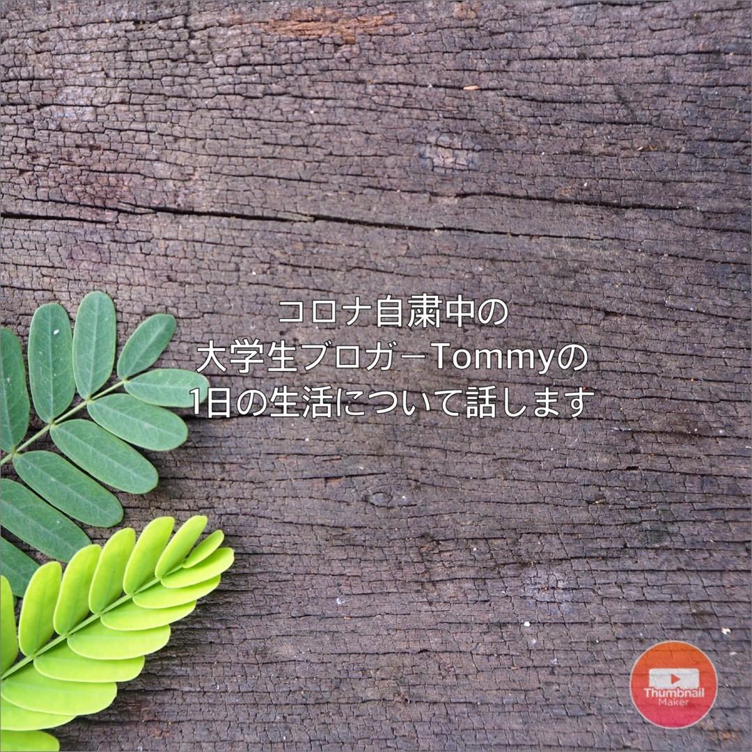 f:id:TommyJ1105:20200504183639j:plain