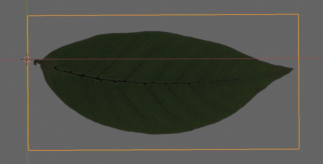 Blnderで利用できる葉のオブジェクト