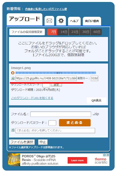 GigaFileの共有URL