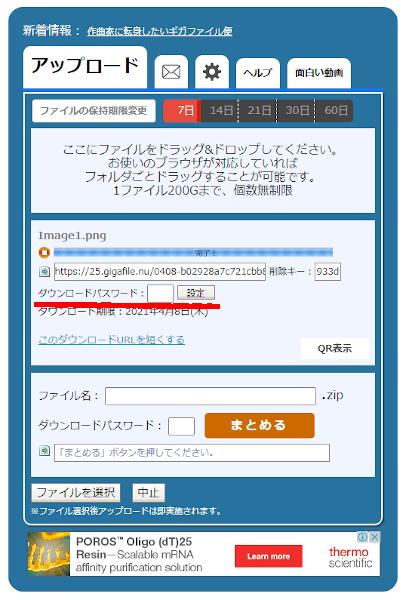 GigaFileのパスワード設定項目