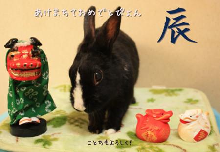 f:id:Tomoko_pyon:20120101100614j:image