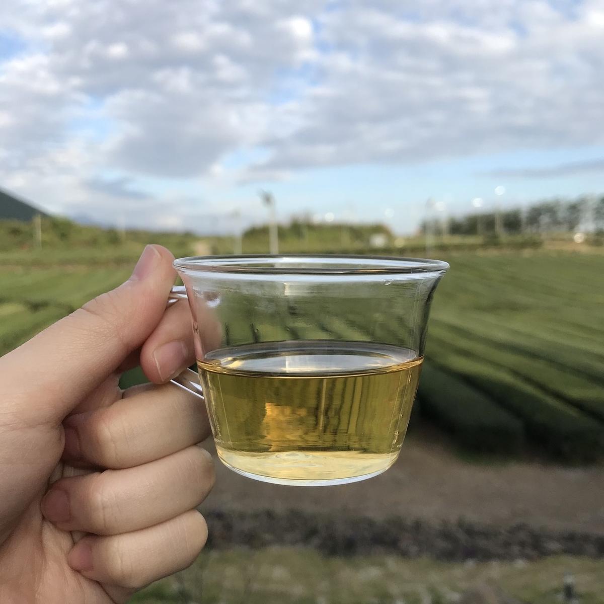 緑茶がガラスカップに入っている画像