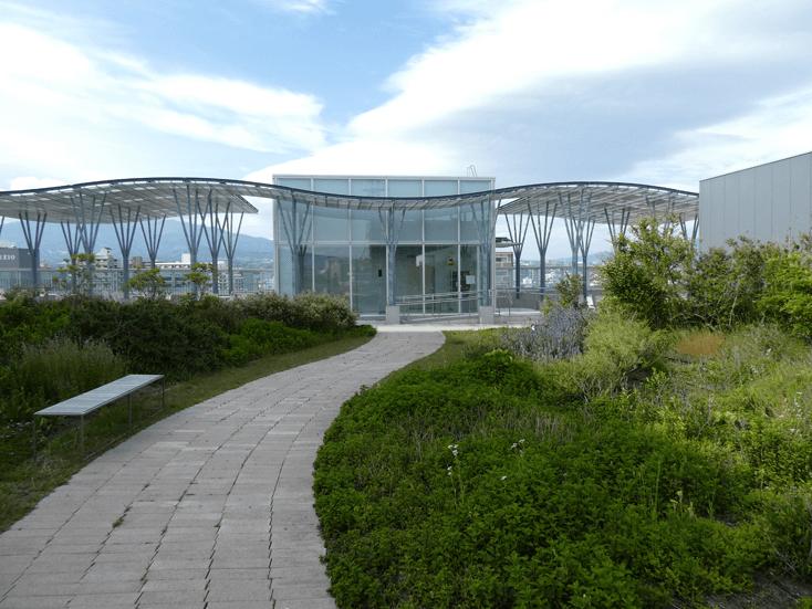 plazaverde