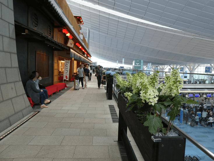 okonomi yokotyou