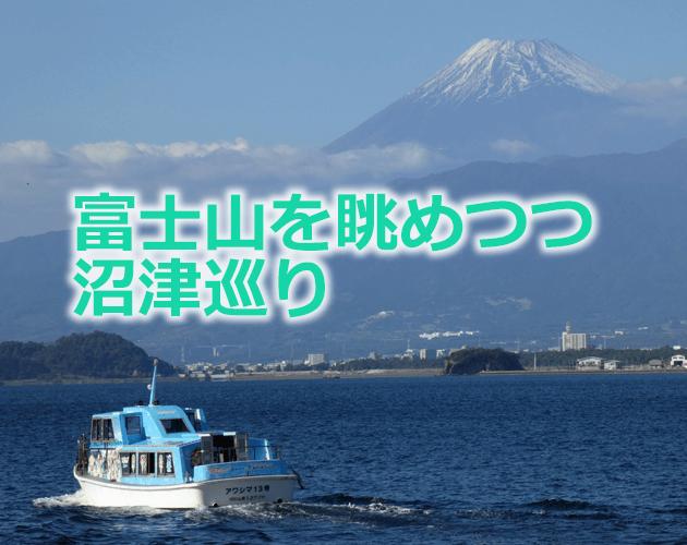 numazu awashima