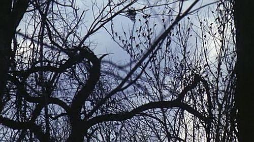 『ダーク・ハーフ』1993年