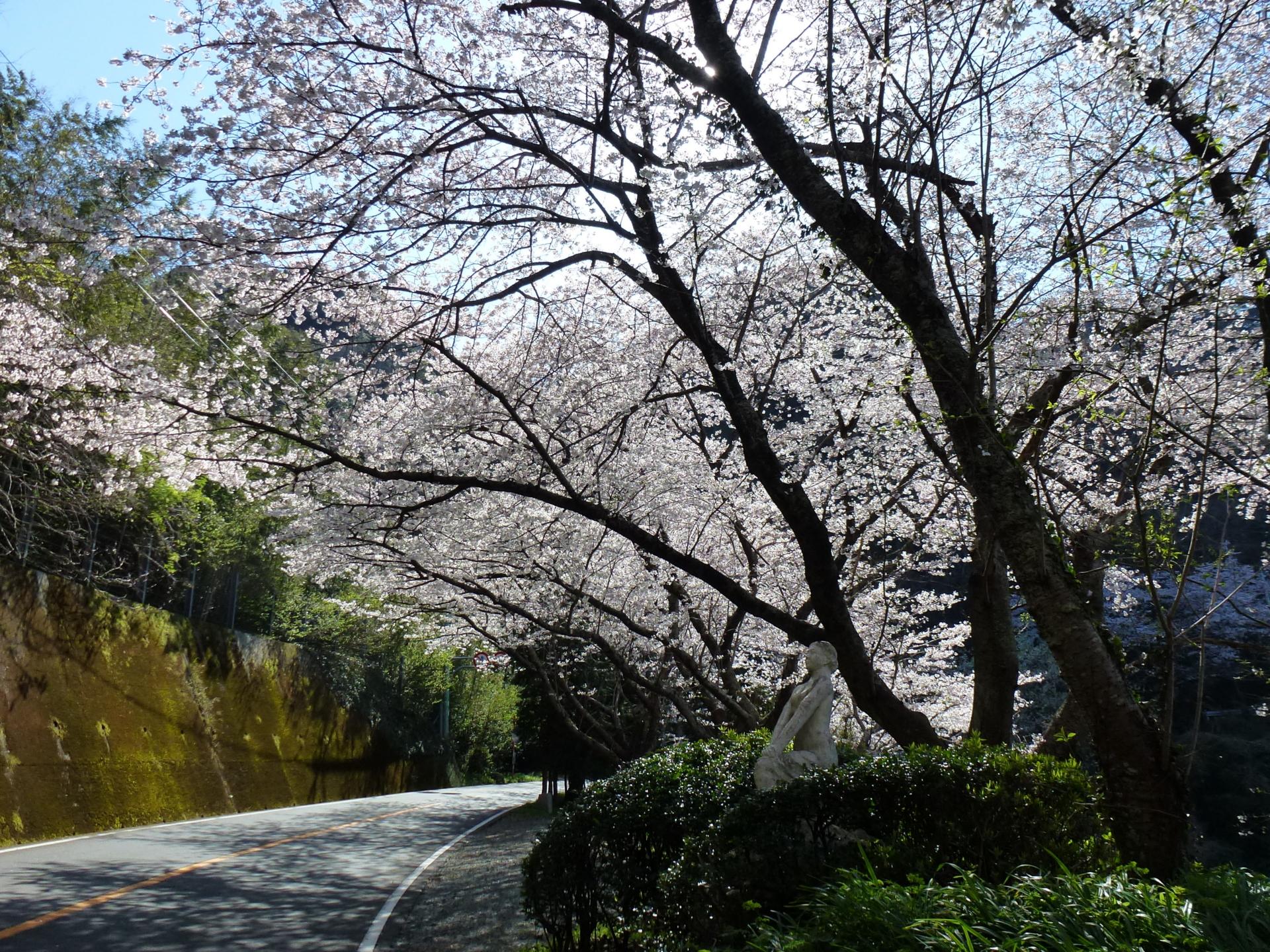 f:id:ToshUeno:20120401143328j:plain