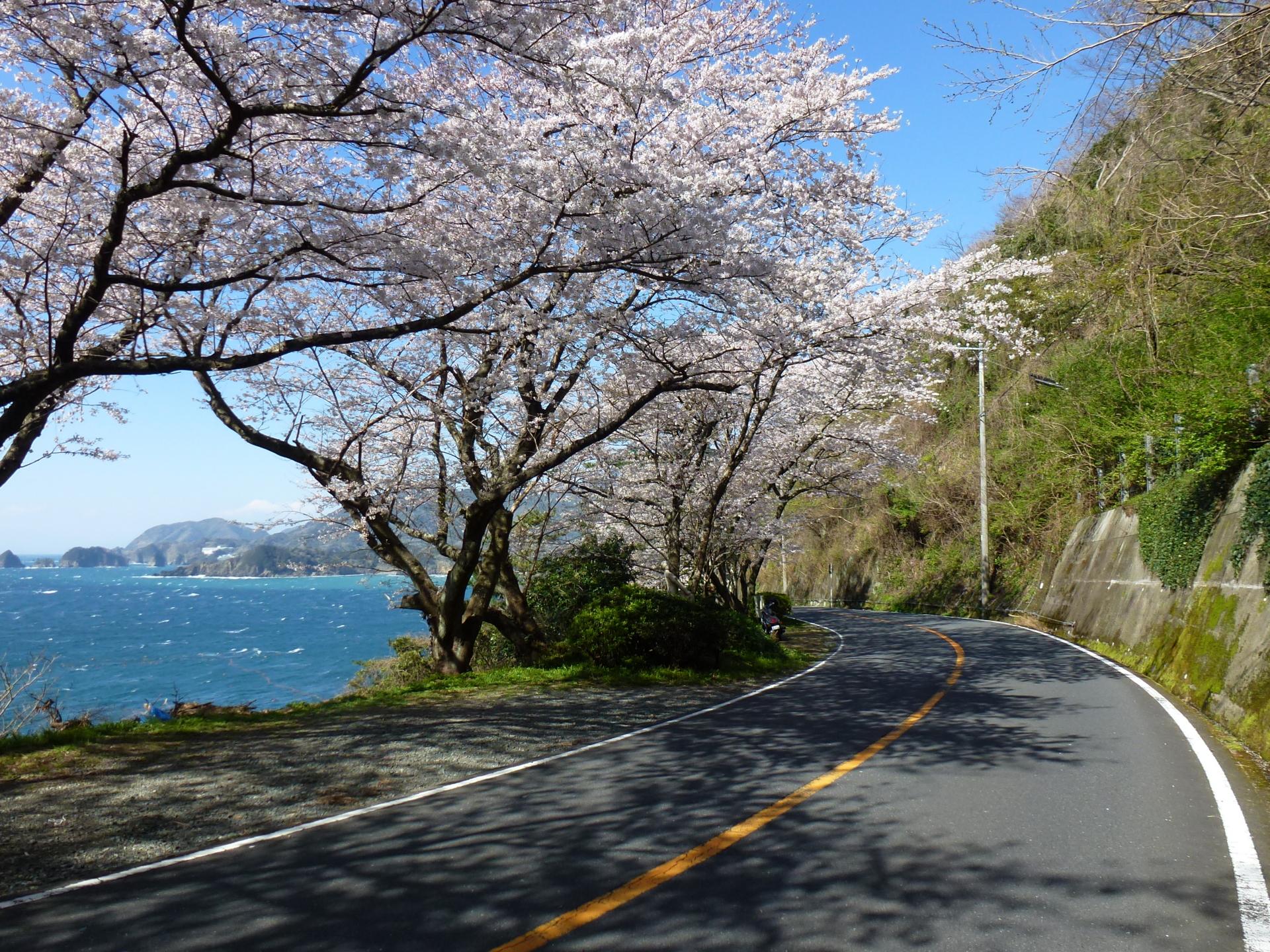 f:id:ToshUeno:20120401143501j:plain