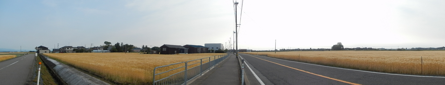 f:id:ToshUeno:20130524162011j:plain