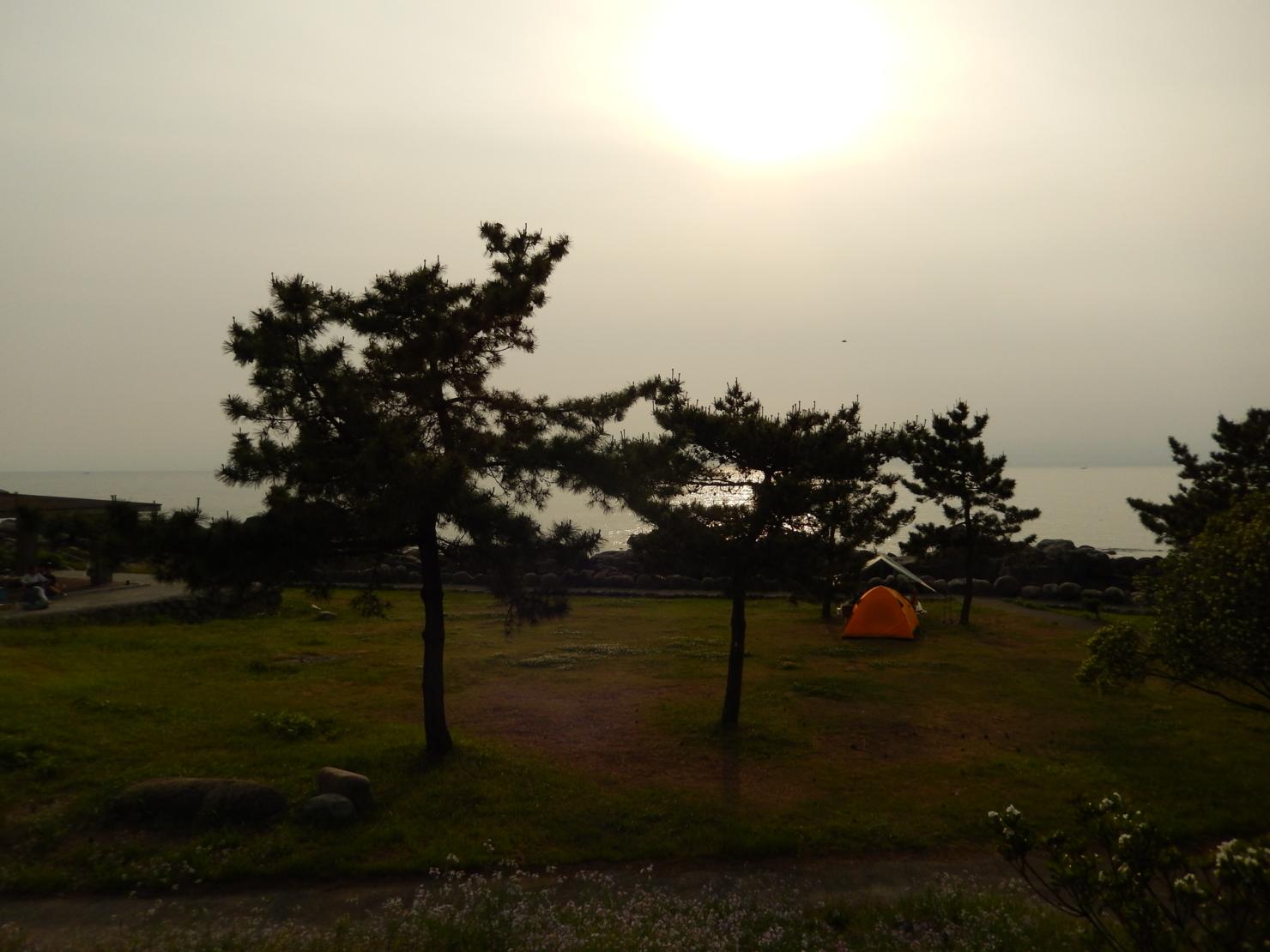 f:id:ToshUeno:20130524170650j:plain