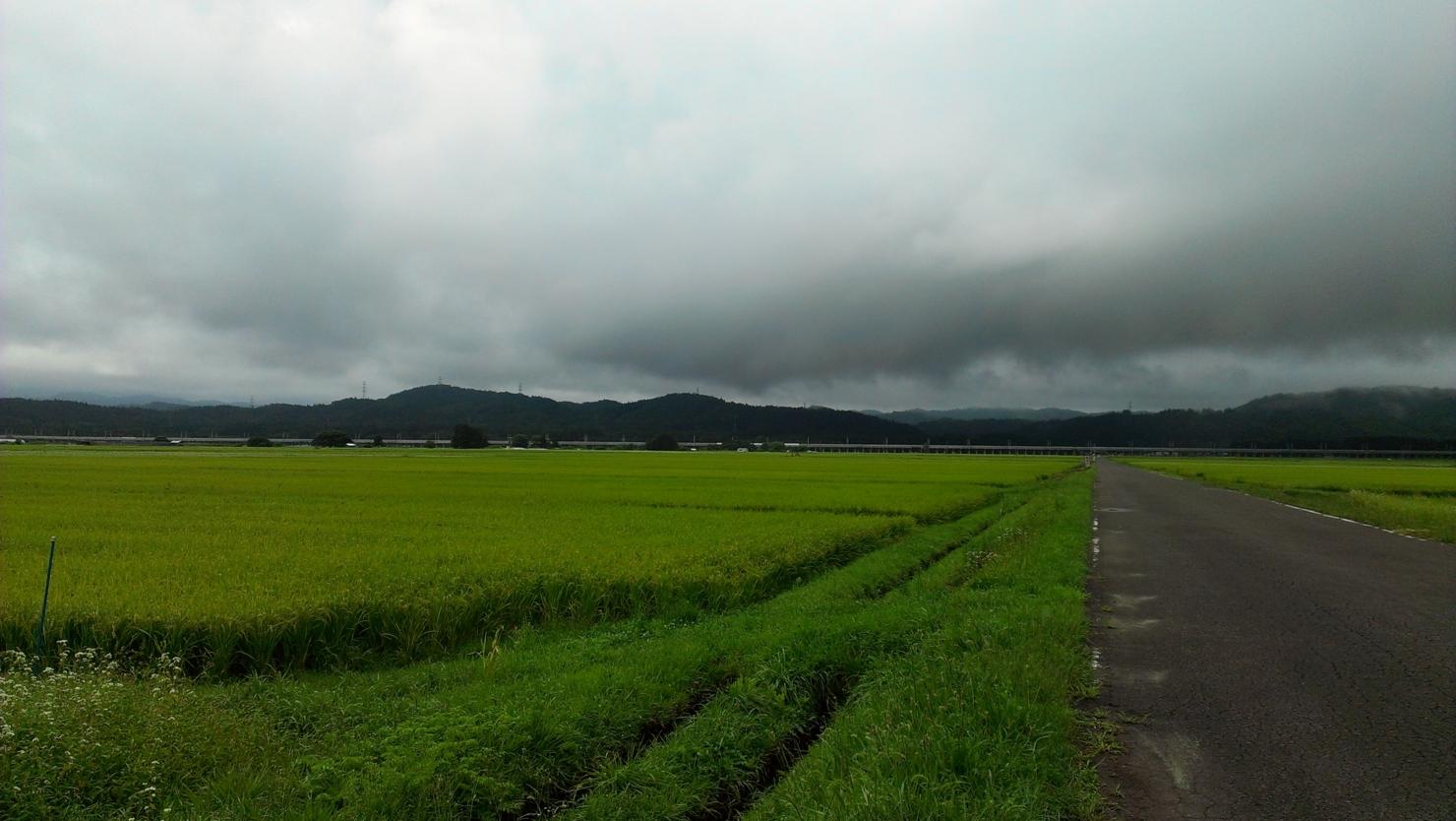 f:id:ToshUeno:20130901110002j:plain