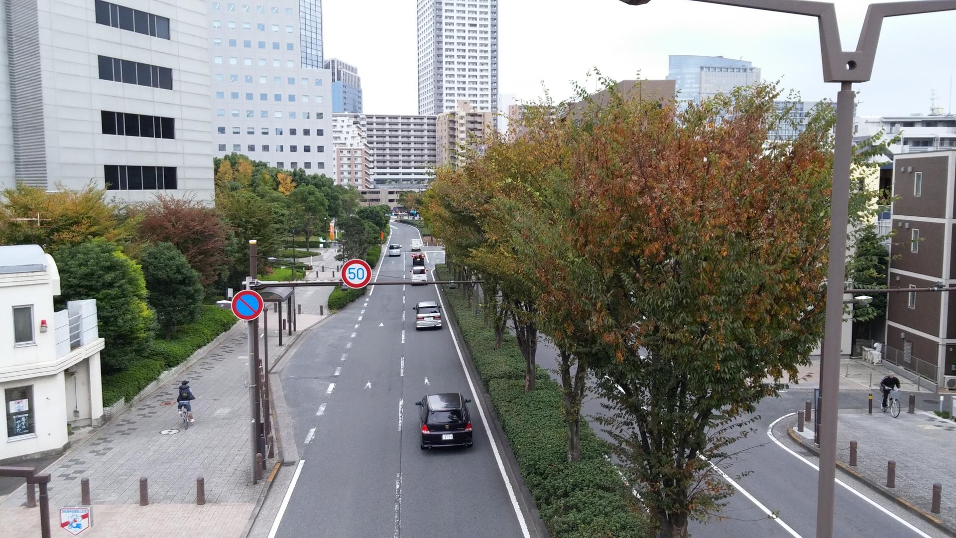 f:id:ToshUeno:20141108104853j:plain