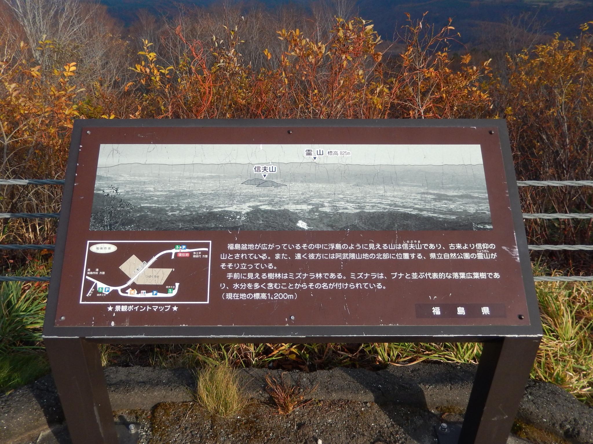 f:id:ToshUeno:20151106144037j:plain