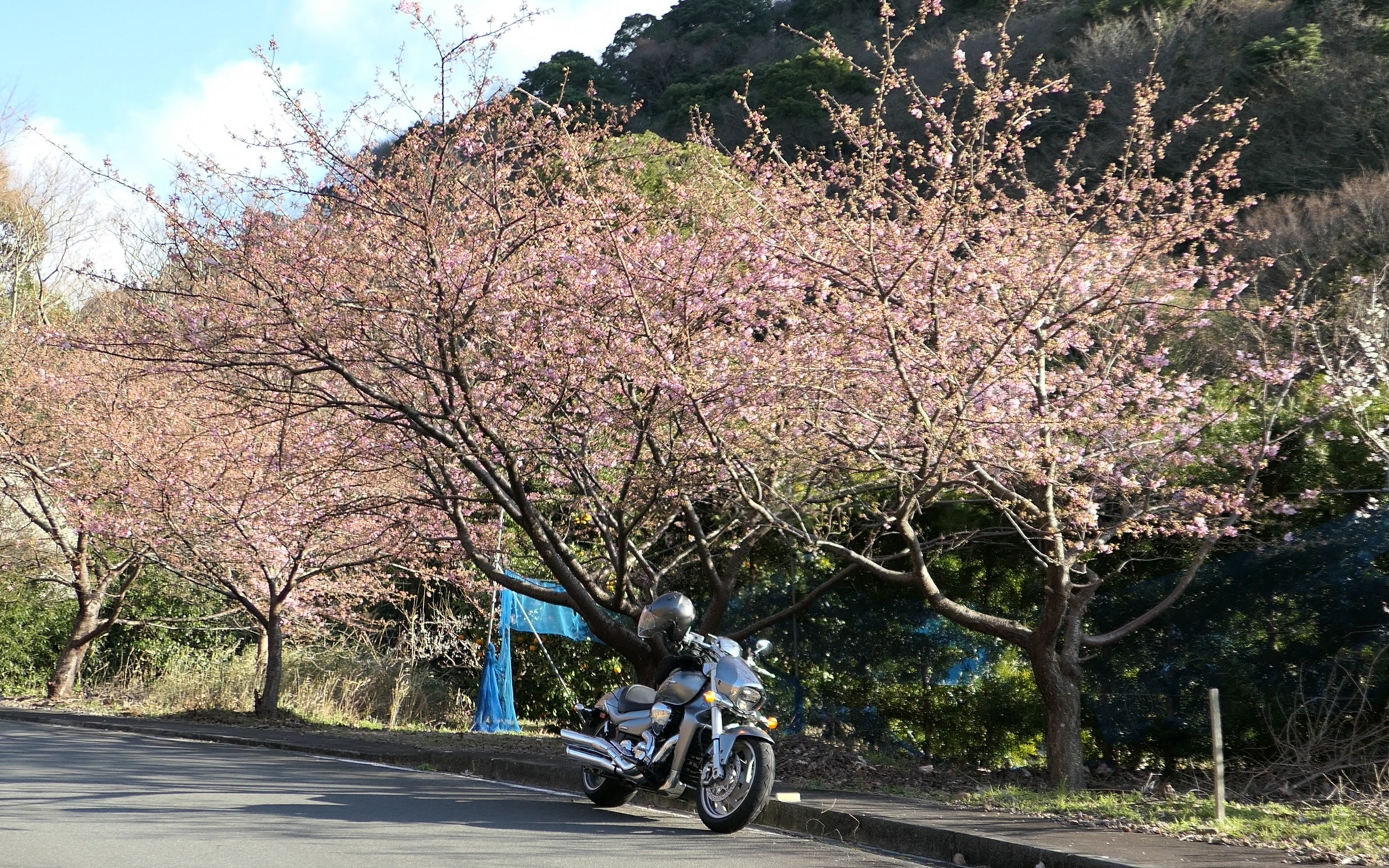 f:id:ToshUeno:20170204152602j:plain