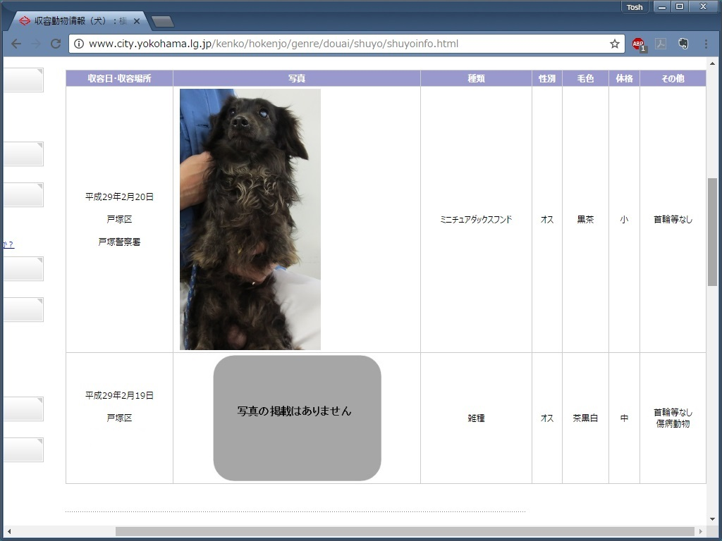 f:id:ToshUeno:20170223130704j:plain