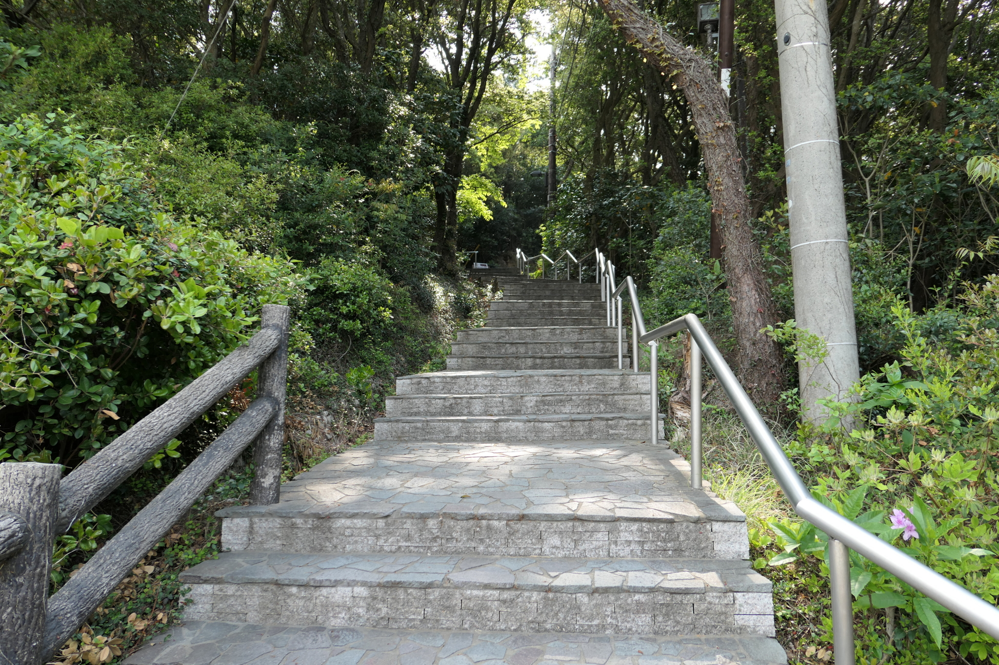f:id:ToshUeno:20170429090954j:plain