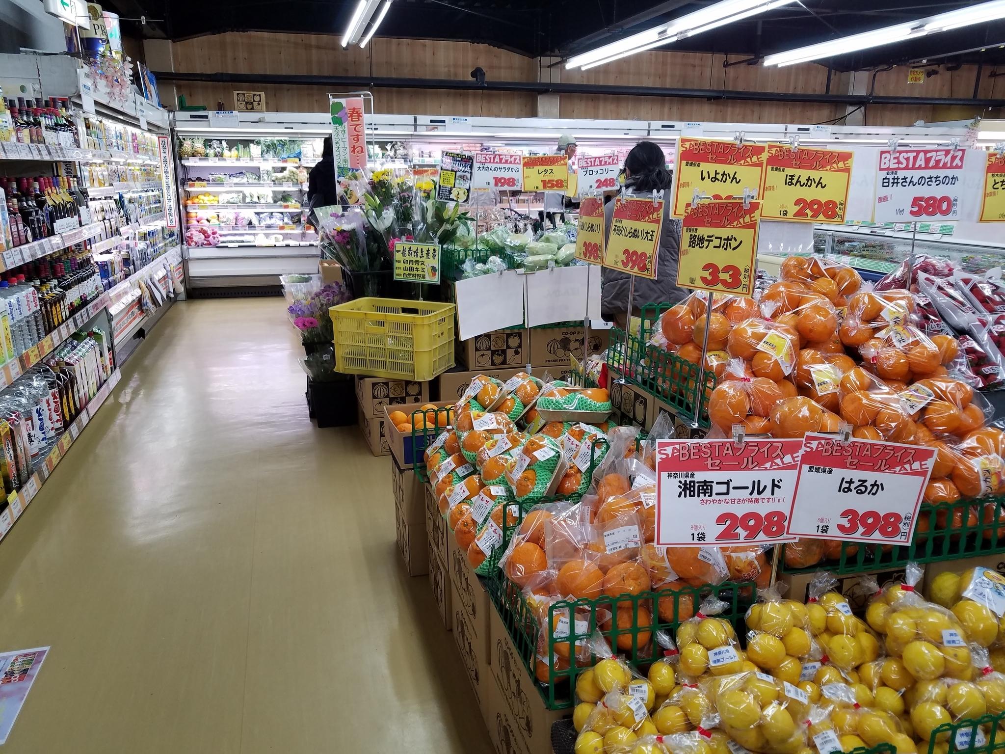 f:id:ToshUeno:20180330144841j:plain