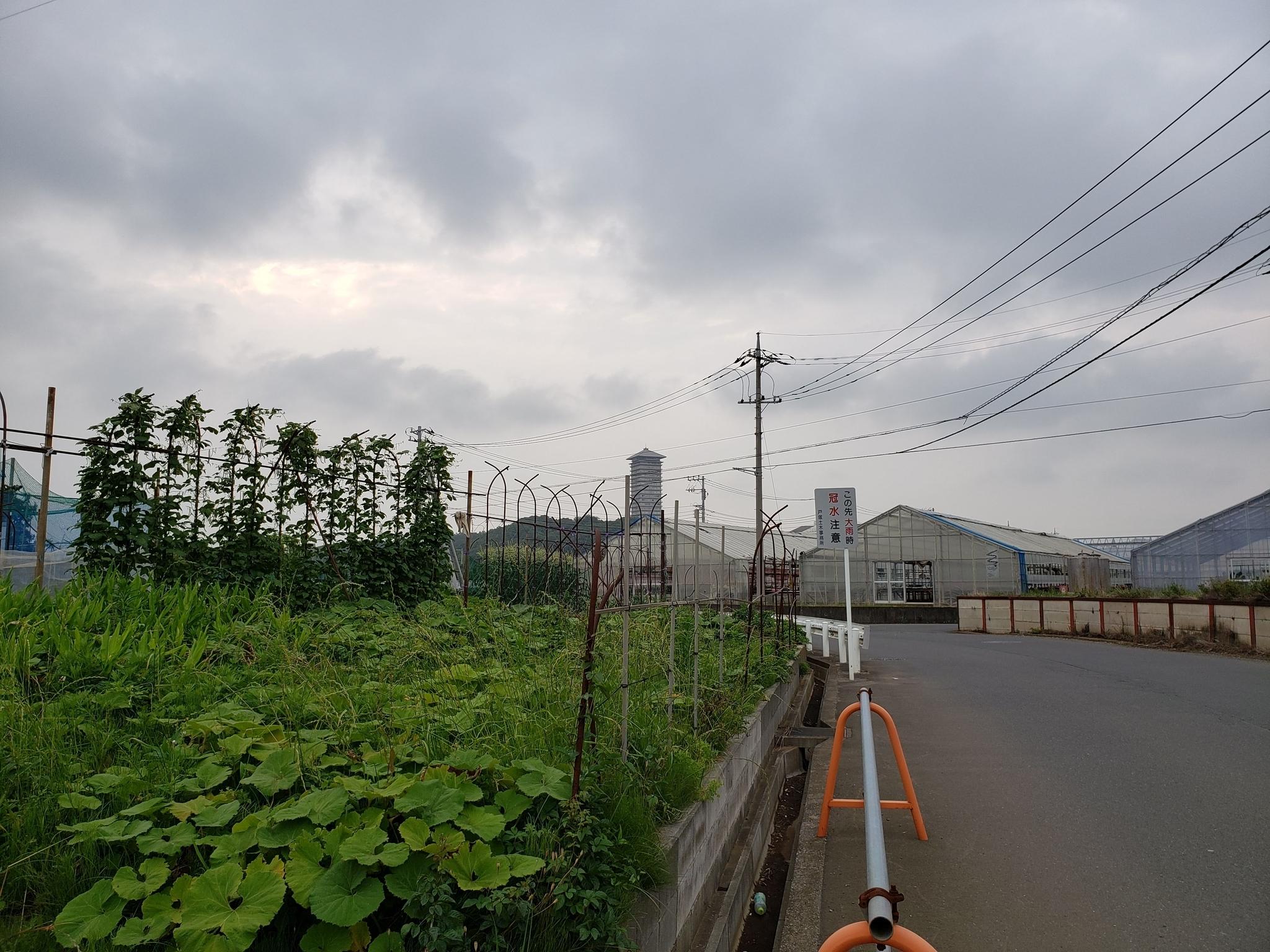 f:id:ToshUeno:20190608173912j:plain