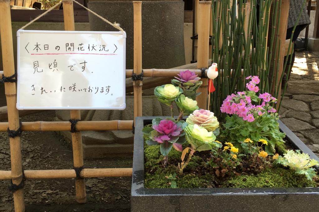 f:id:Toshi-bm:20170127141818j:plain