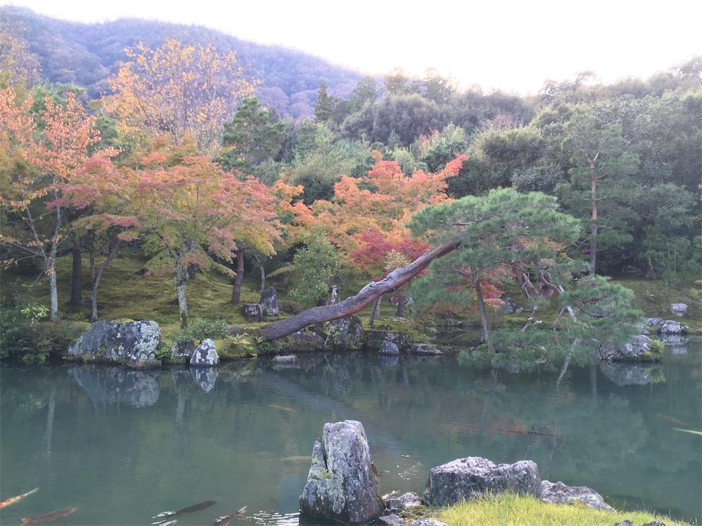 f:id:Toshibo:20171102105120j:image