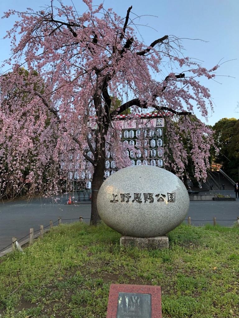 f:id:Toshibo:20190325000115j:image