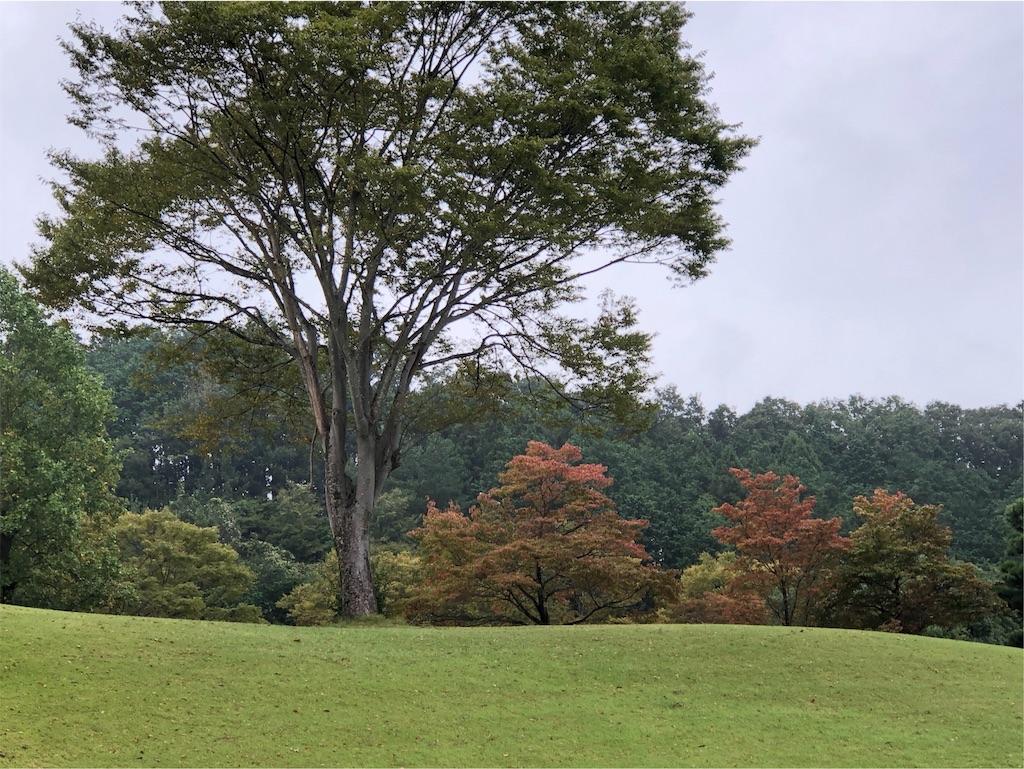 f:id:Toshibo:20191016235236j:image