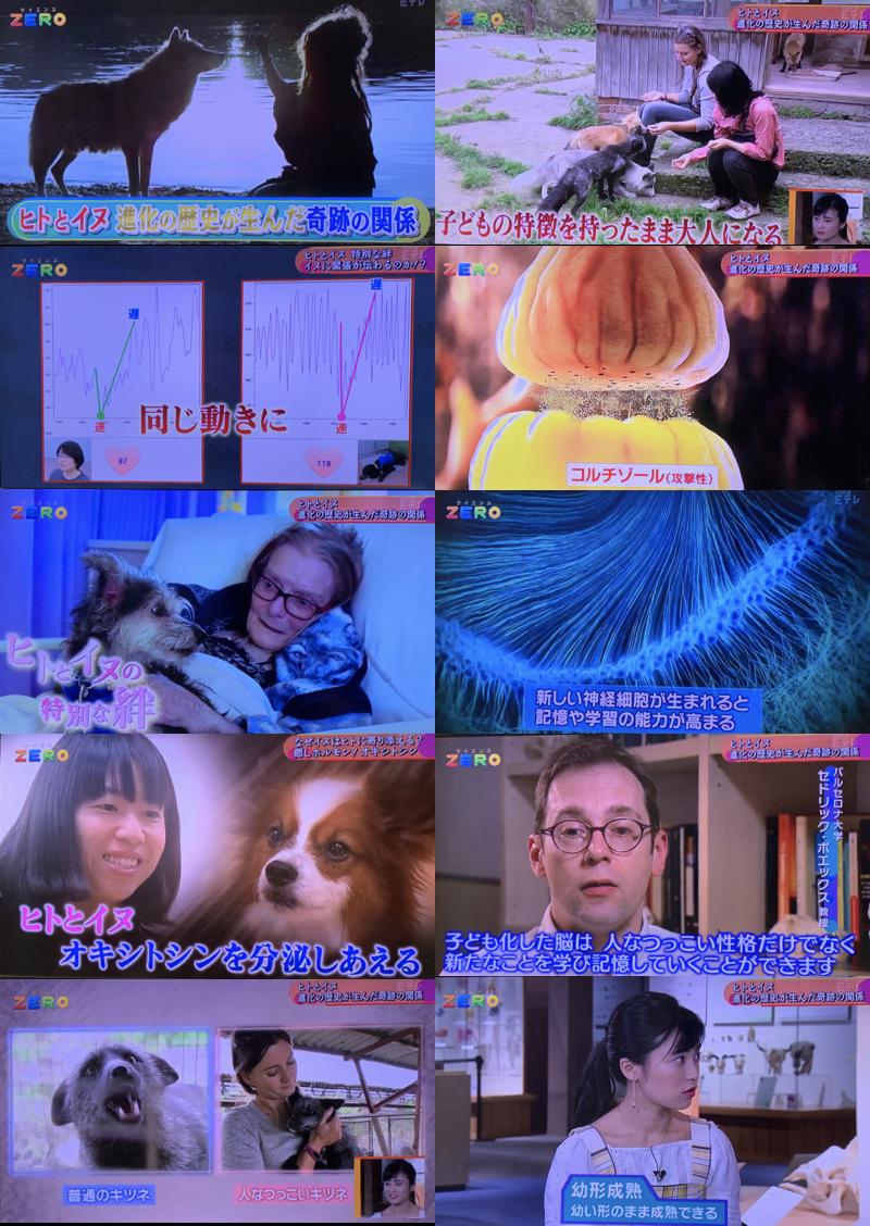 f:id:ToshihiroTakagi:20190611192518p:plain